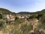 Mallorca 2016 - Woche 2