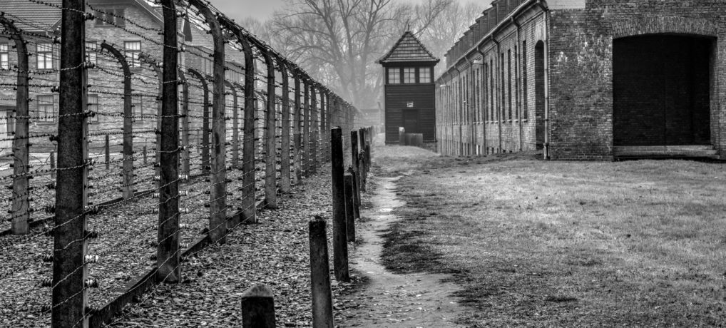 Krakau & Auschwitz 2015