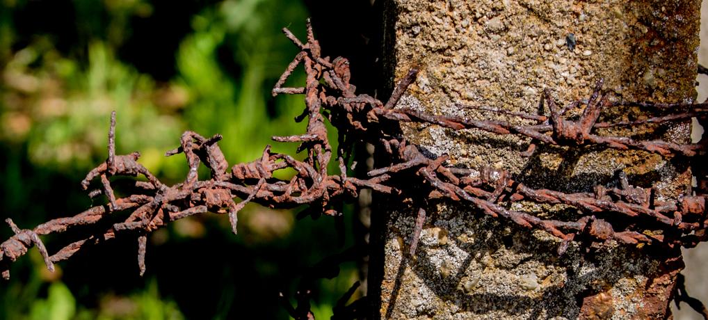 Buchenwald & Weimar 2016